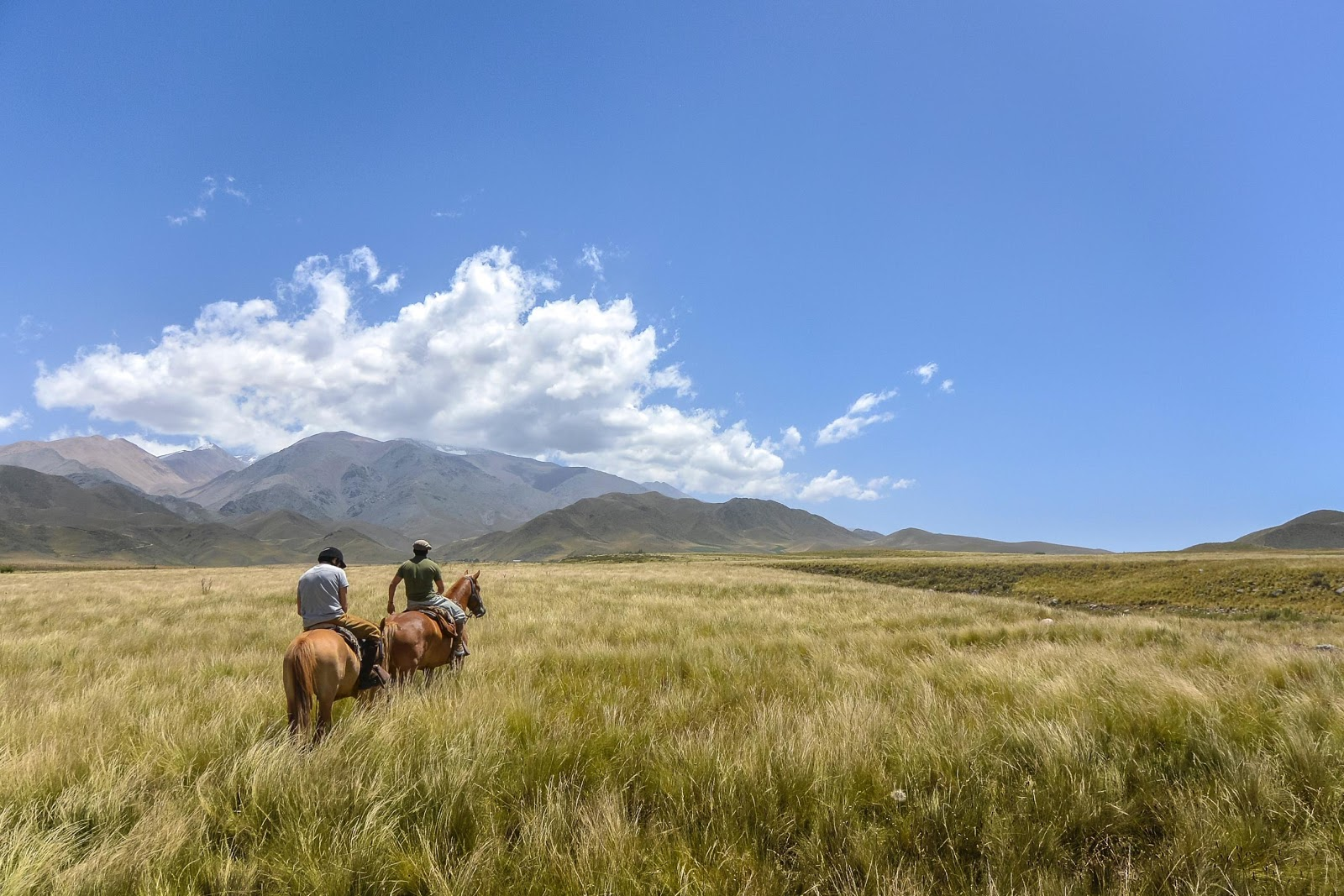 Morzine horse riding